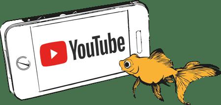 Goldfish YouTube
