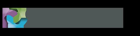 Sandvine Logo